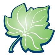 листо